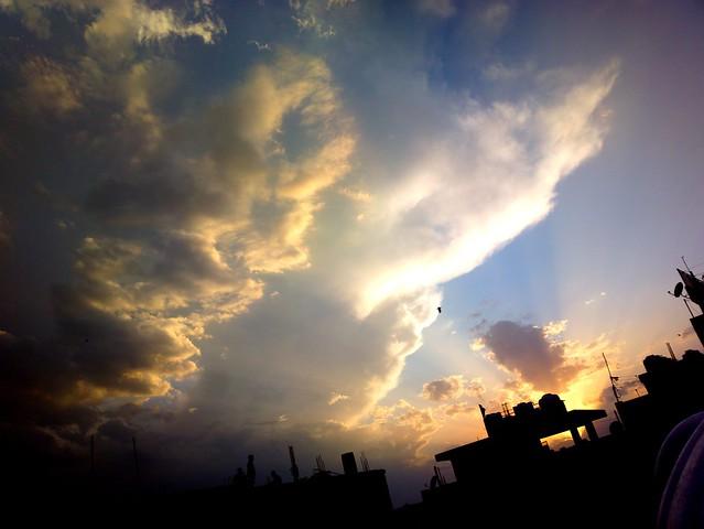 Weather 🌍☀⛅☁💧⚡❄