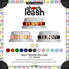 .:Short Leash:. Bold Words Collars - Pet Versions