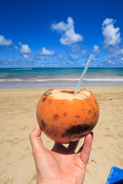 Coco frio Puerto Rico