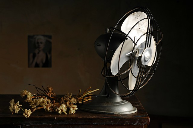 The Dusty Fan