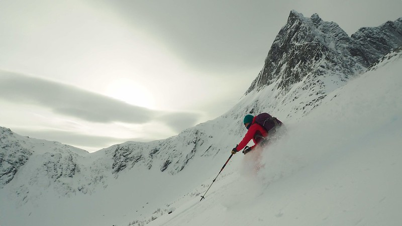 Senja Shredding. Skier: Lisa Allwood