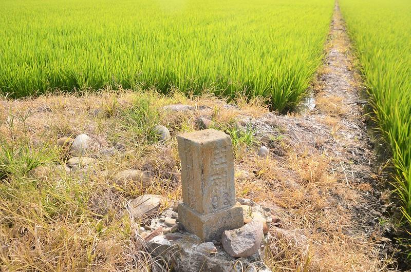 山子頭陸軍三等三角點補點(# 陸補93 Elev. 25 m)