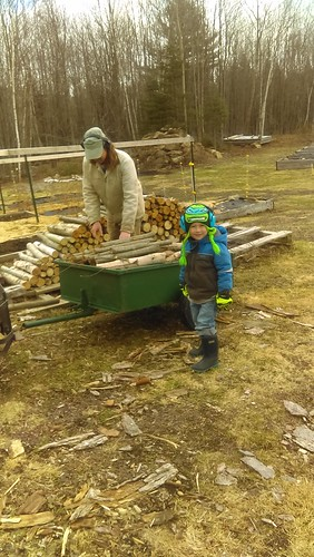helping with wood