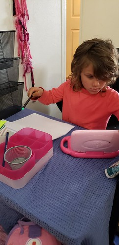 teaching from her home office