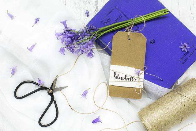 18/30: A sprinkling of bluebells