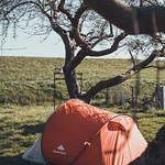 Campspace_Joel_StijnHoekstra-05401