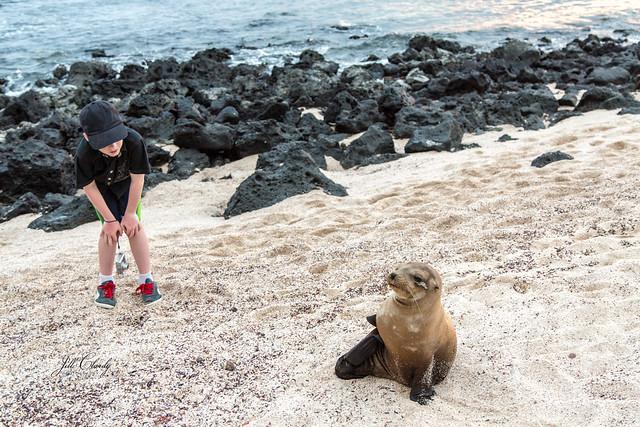 Armchair Traveling - San Cristobal, Galapagos, Ecuador