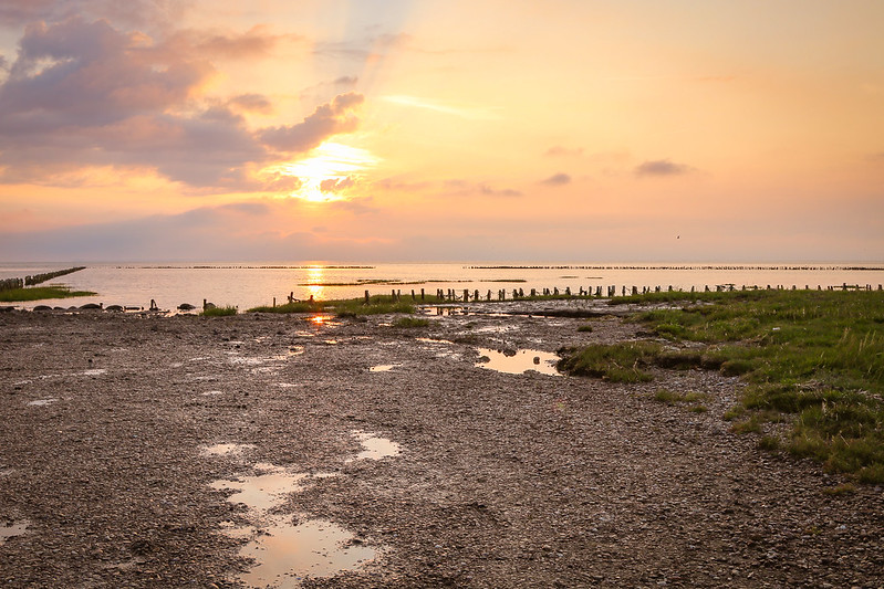 The Wadden Sea Denmark