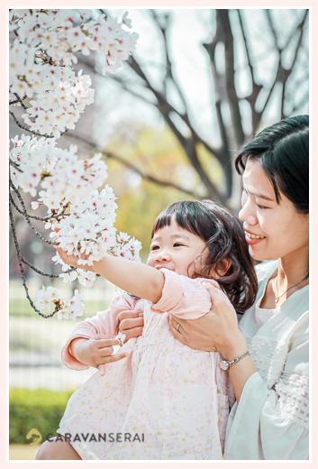 桜の花を眺める女の子 ママ抱っこ