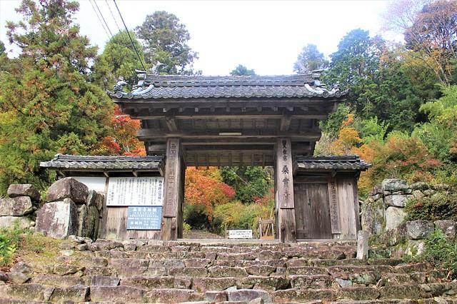 kannonshoji-gosyuin023