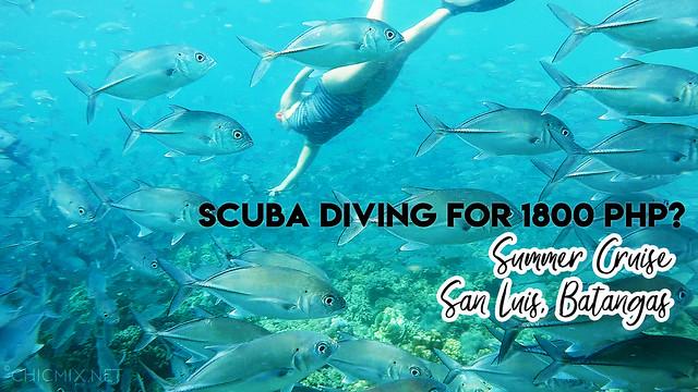 scuba diving free diving summer cruise san luis batangas
