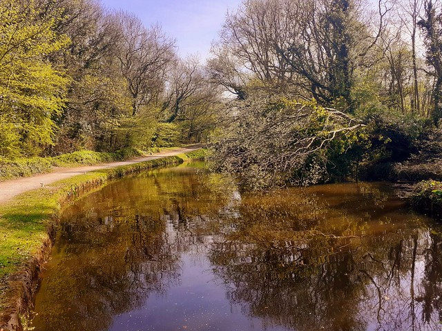 Peaceful, Peak Forest Canal, Marple, Stockport, England.