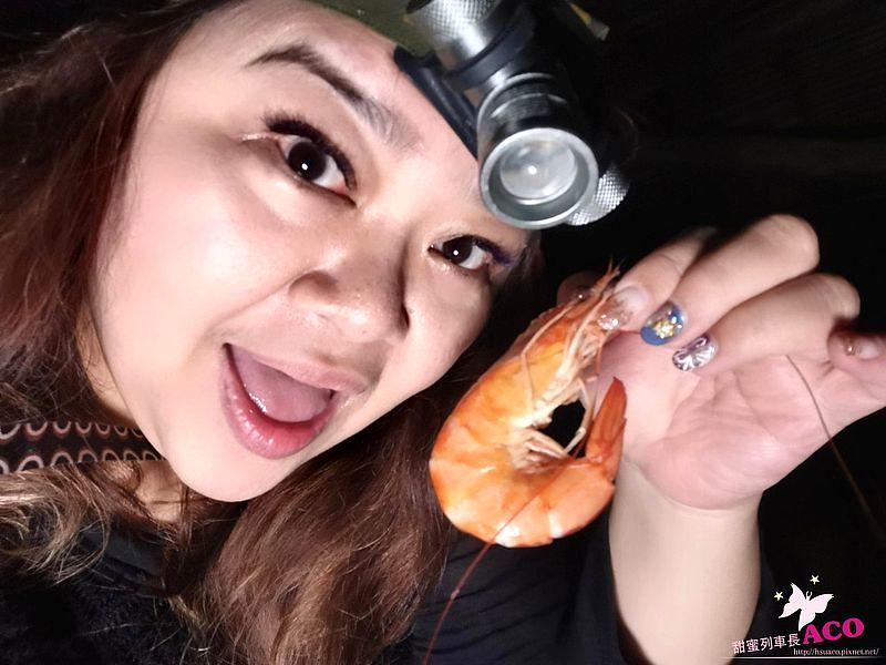 台東旅遊 台東夜間活動 夜間抓溪蝦11