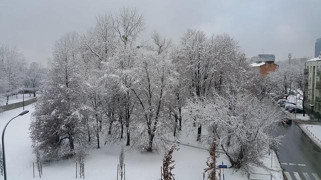 skwer Pawełka zimą