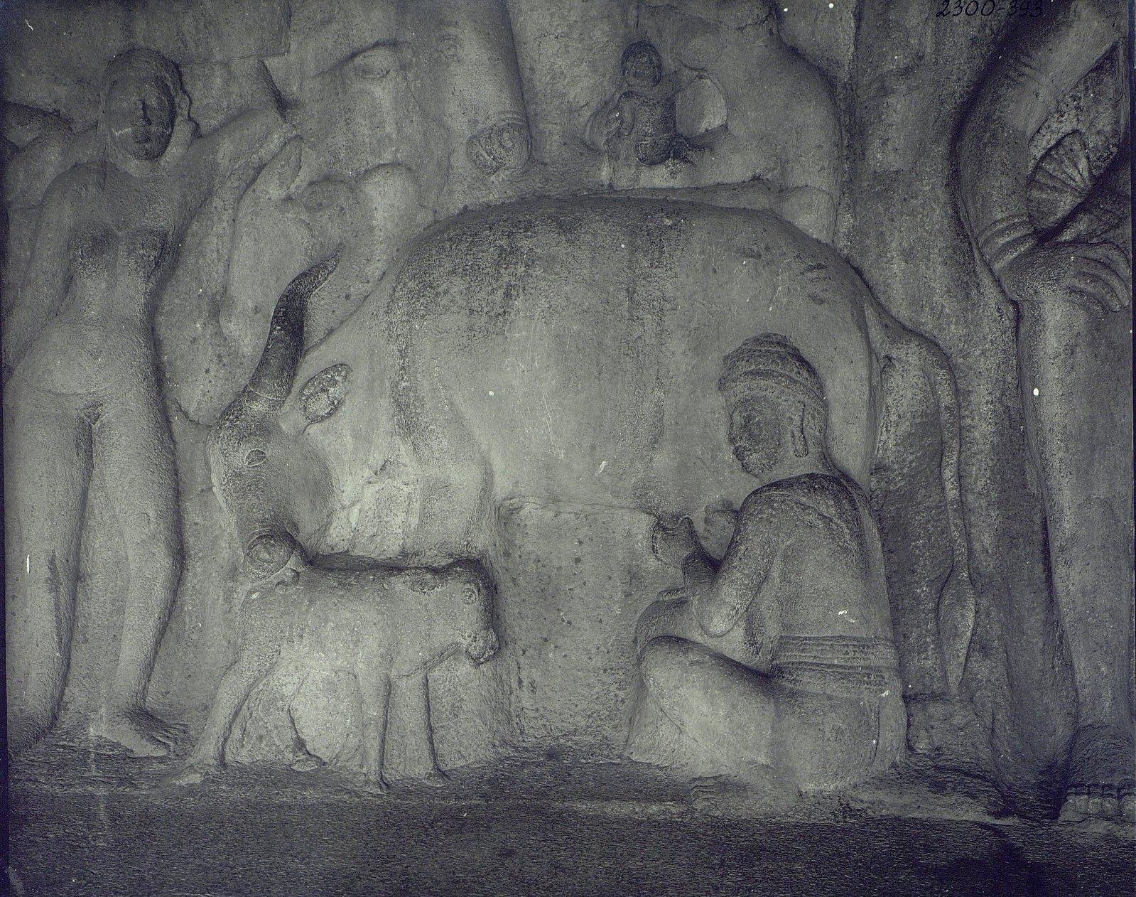 26. Мамаллапур (деталь рельефа «Доильщик и корова с теленком»)