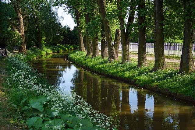 kanał bródnowski