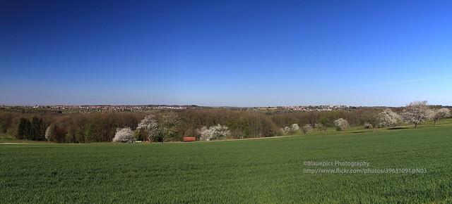The Schurwald villages of Baltmannsweiler and Hohengehren