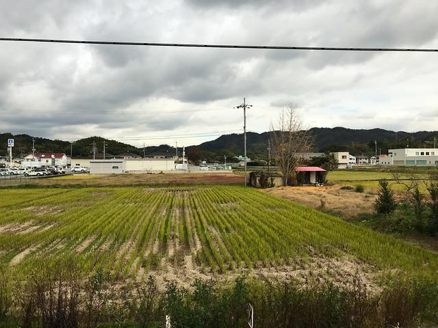 894-Japan-Kishi