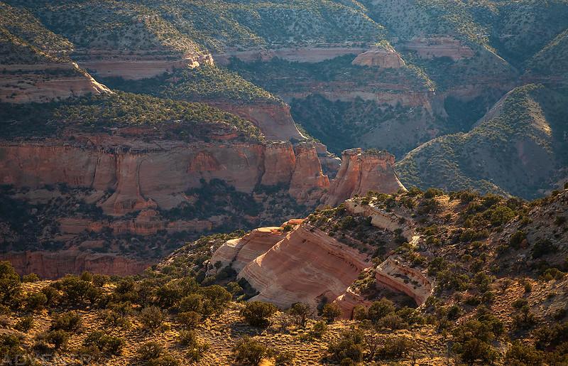Hazy Canyon View