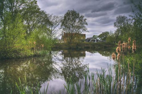 Hatfield Heath Pond