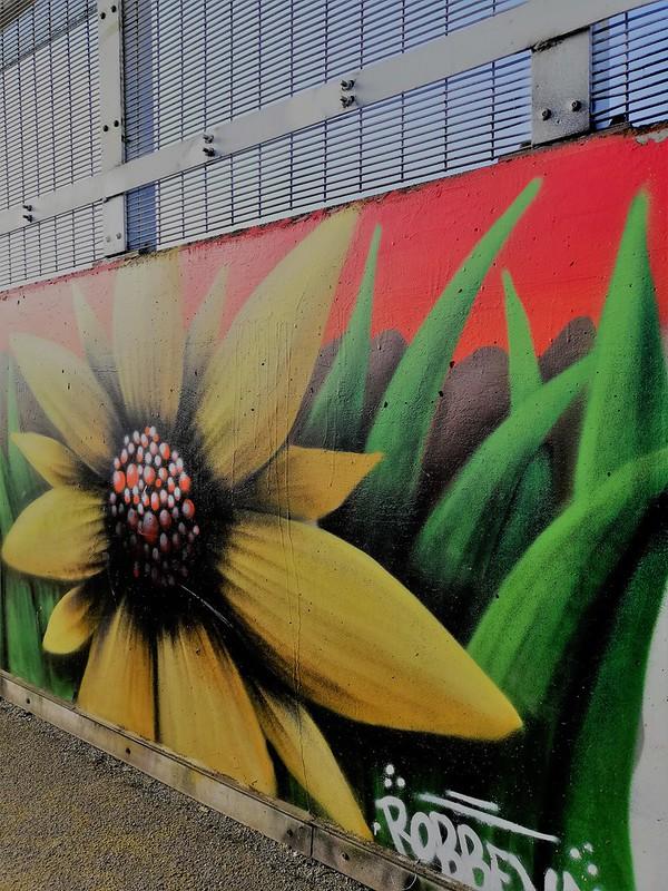 Arte callejero Lovaina (4)
