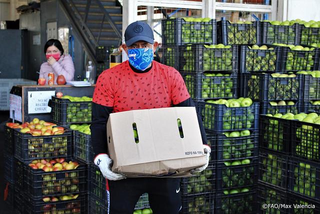 Chile: Mercado Lo Valledor durante la pandemia COVID-19