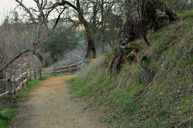 the path to a little-known beach in the Gold Country of California