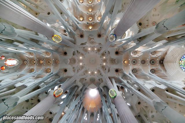 barcelona sagrada familia ceiling