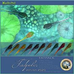 FF 2020 Exclusive:  DDDF MUDRANA  Tadpoles v.2020 FATPACK
