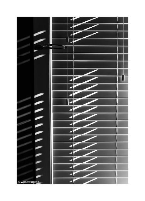 Light Blind ©