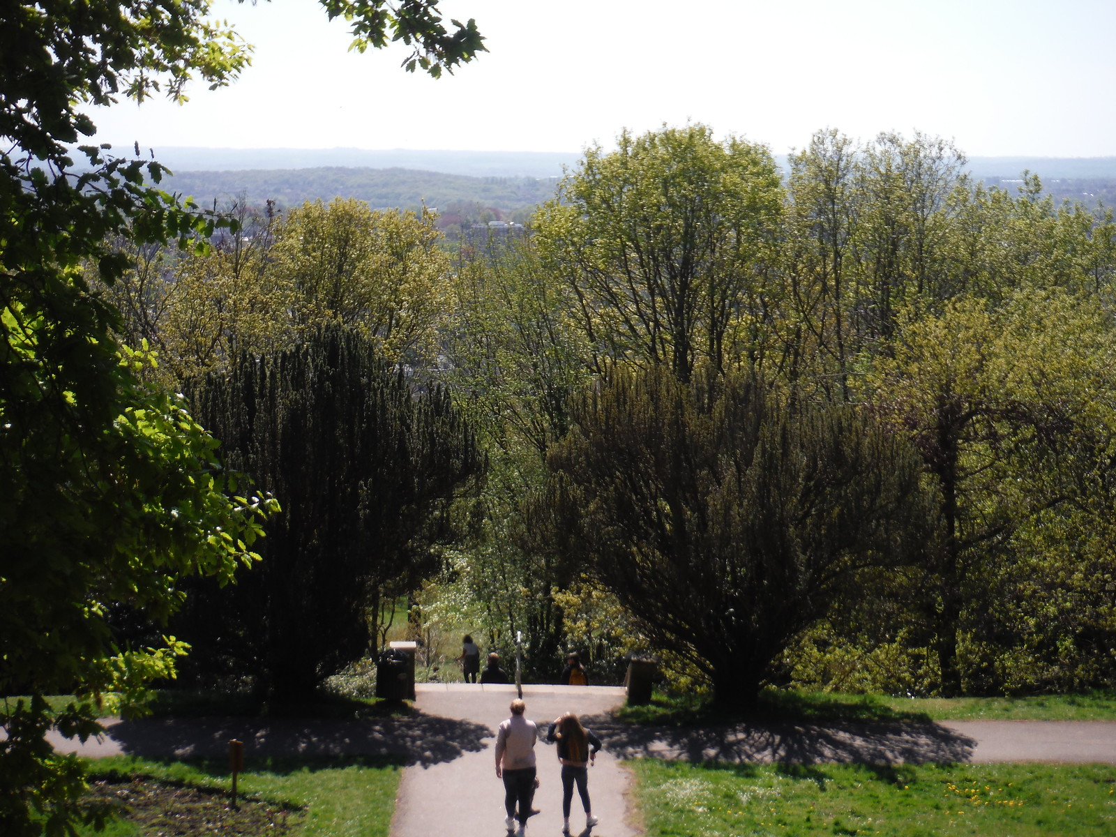 View from top of Terraced Gardens, Castle Wood SWC Short Walk 44 - Oxleas Wood and Shooters Hill (Falconwood Circular)