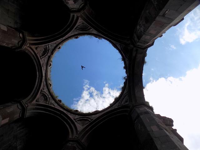 კუმურდოს მტრედი / Pigeon of Kumurdo Cathedral