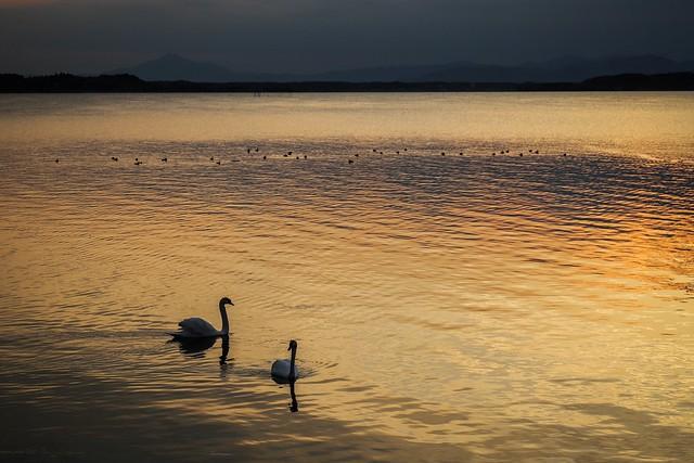 evening glow of a rural lake