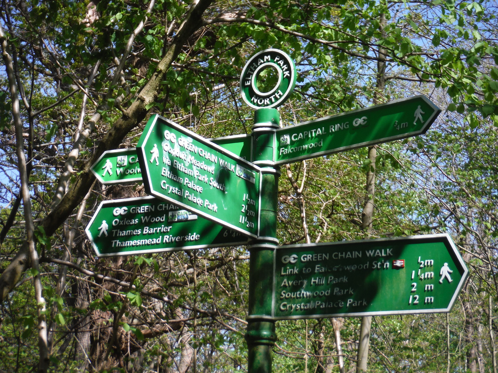 Green Chain Walk and Capital Ring Signpost in Shepherdleas Wood SWC Short Walk 44 - Oxleas Wood and Shooters Hill (Falconwood Circular)