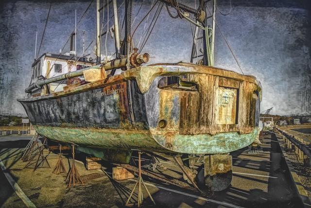 Wellfleet Fisheries