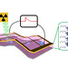 X-ray detectors made with 2-dimensional perovskite thin films convert X-ray photons to electrical signals without requiring an outside power source, and are a hundred times more sensitive than conventional detectors.