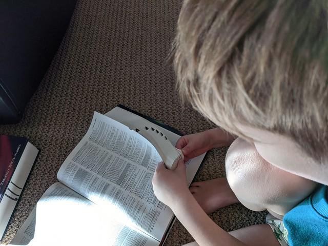 Big Kid Dictionary
