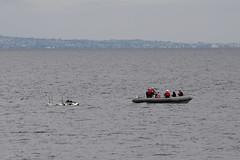 A rigid-hull inflatable boat (RHIB) crew from USS Princeton (CG 59) renders aid to a distressed personal watercraft user, April 17. (U.S. Navy/MC2 Logan Kellums)