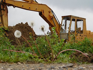 excavation-services-ocoee-fl