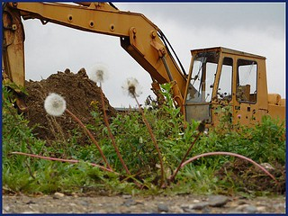 excavation-services-sumterville-fl