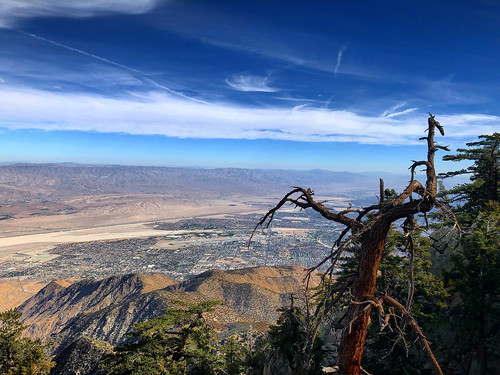 california usa tree landscape high view desert palmsprings dry valley vista southerncalifornia viewpoint sky mountains clouds