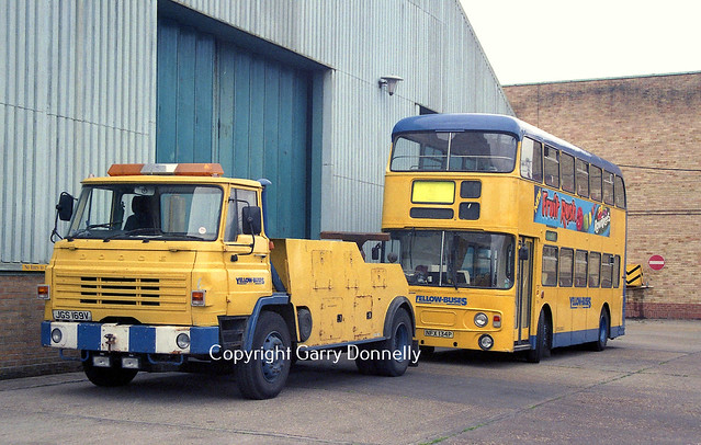 Yellow Buses Dodge JGS 169V + 134 NFX 134P