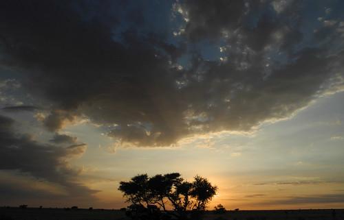 tschad ciad tchad chad afrika afrique africa ennedi sahara sahel rock art paintings engravings petroglyphs gravures gravuren malereien expedition desert sunset camp