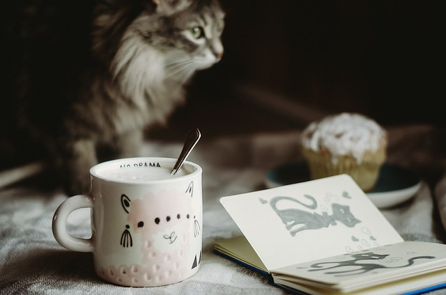 Morning coffee....
