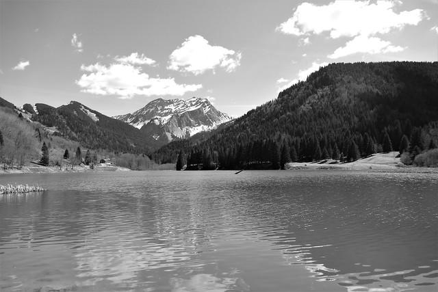 04.13.17.Lac de Vallon (France)