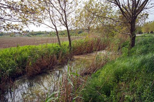 landscape glina romînia ilfov water outdoor nature colors trees samsung nxmini