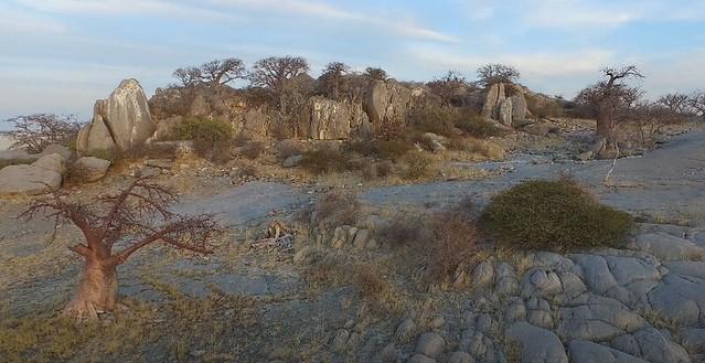 Isla Kubu (Botswana)