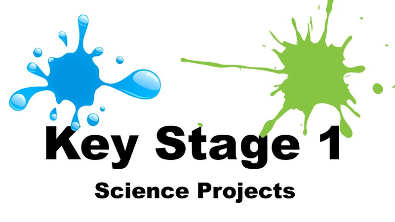 Key stage 1 projects
