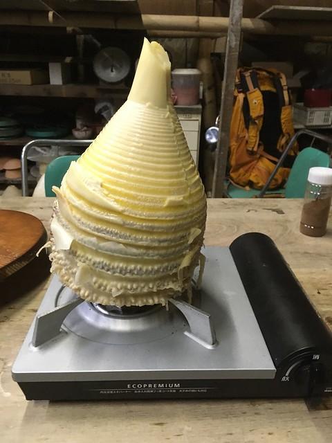 巨大竹の子を料理する!w