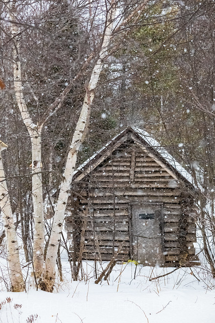 Log Cabin and Falling Snow in Michigan